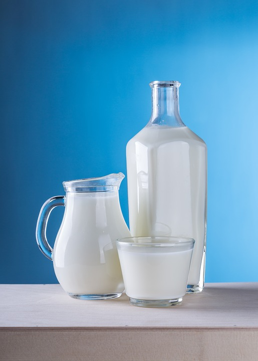 best milk for weight loss