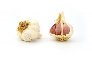 garlic candida diet